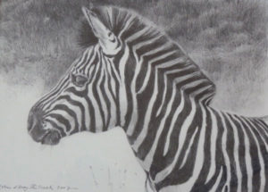 122509_robin-shillcock-artwork