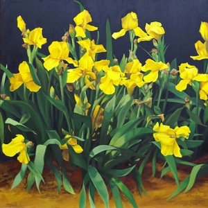 https://painterskeys.com/wp-content/uploads/2016/02/Helen-Vaughn_Yellow-Iris-wpcf_300x300.jpg