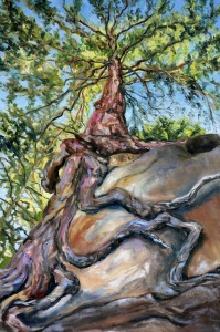 http://painterskeys.com/wp-content/uploads/2019/11/Standing-below-the-old-fir-at-Tribune-Bay-36-x-24-inches-walnut-oil-on-canvas-by-Terrill-Welch-IMG_9102-1-wpcf_199x300.jpg