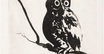 Startled (owl), 1984 sugarlift aquatint, printed in black ink on ivory wove paper 75.9 x 56.8 cm  by Brett Whiteley (1939-1992)