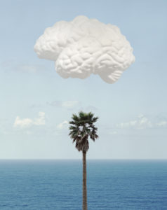 Brain/Cloud (With Seascape and Palm Tree), 2009 Inkjet print on Hahnemüle photo rag 308 gsm paper using archival inks 30.75 x 22.75 inches by John Baldessari