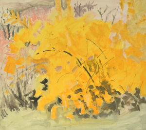 Forsythia, April, 1976 oil on Masonite 16 x 17 3/4 inches by Lois Dodd (b.1927)