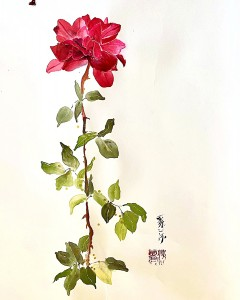 http://painterskeys.com/wp-content/uploads/2020/03/Single-Rose-wpcf_240x300.jpg