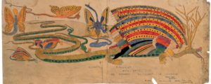Giant Roverine, n.d. watercolour by Henry Darver