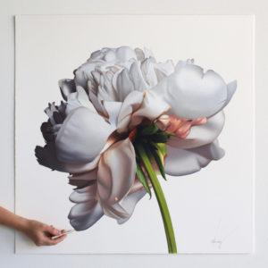 Flower, 2018 Coloured pencil by CJ Hendry