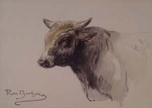 Head of a Bull, n.d. Watercolor and graphite on cream wove paper 4 15/16 x 6 7/8 inches by Rosa Bonheur