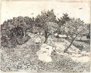 The Rock of Montmajour with Pine Trees, July 1888 Pencil, pen, reed pen, brush and black ink on wove paper 49.1 x 61 cm by Vincent van Gogh (1853-1890)