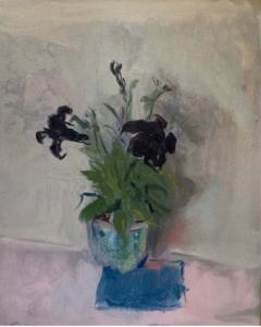 Black Petunia, 2021 Oil on board 40 x 55 cm by Serena Rowe
